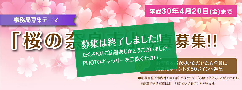 0420_spring_naka.jpg